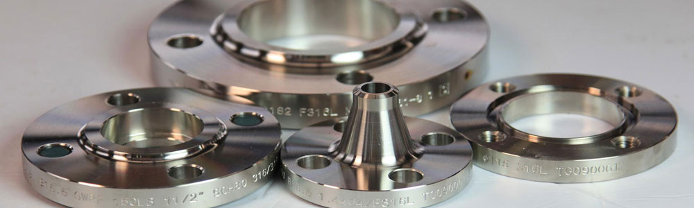 what distinguish Stainless Steel 310 or 316 Flanges cover image