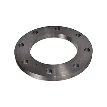 SS Flat Face Flanges